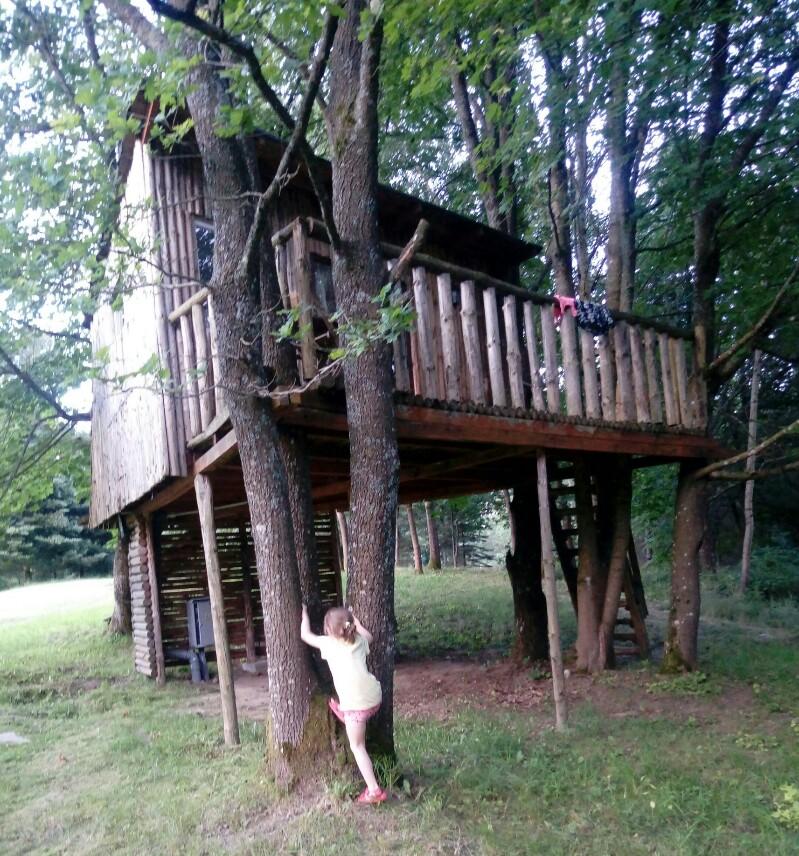 Wakacje w domku na drzewie- FIGLARNIA